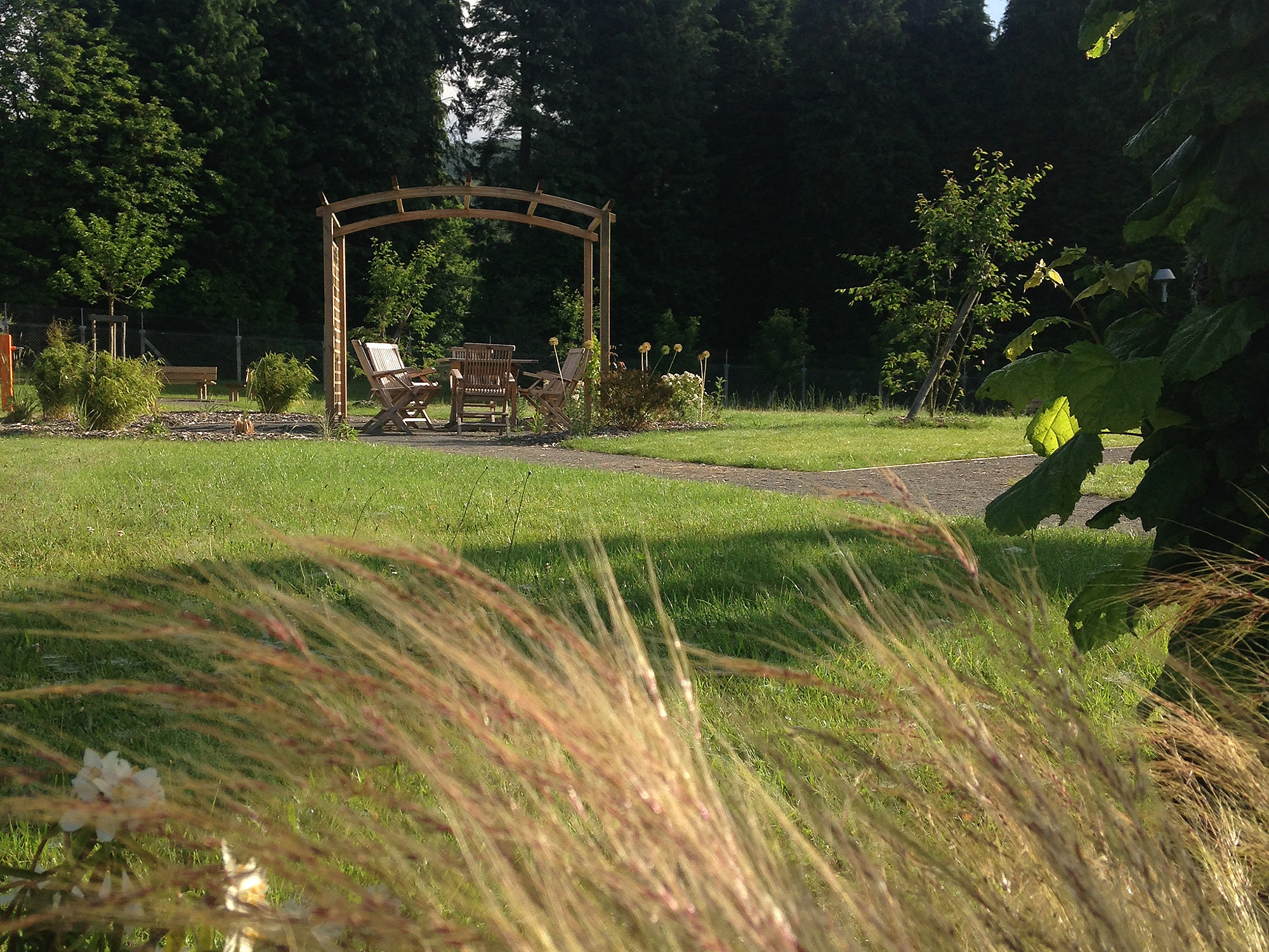 Vue d'ensemble du jardin de soin du Centre Hospitalier de Saint-Vaury