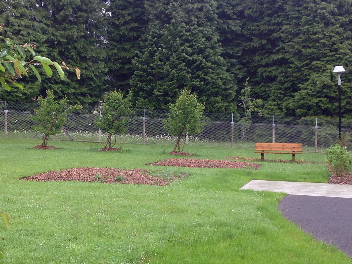 L'espace jardin de l'unité en addictologie du centre hospitalier de Saint-Vaury, un volume parfait pour concevoir un jardin adapté