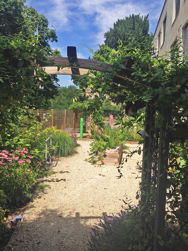 une vue depuis l'arche avec la végétation luxuriante
