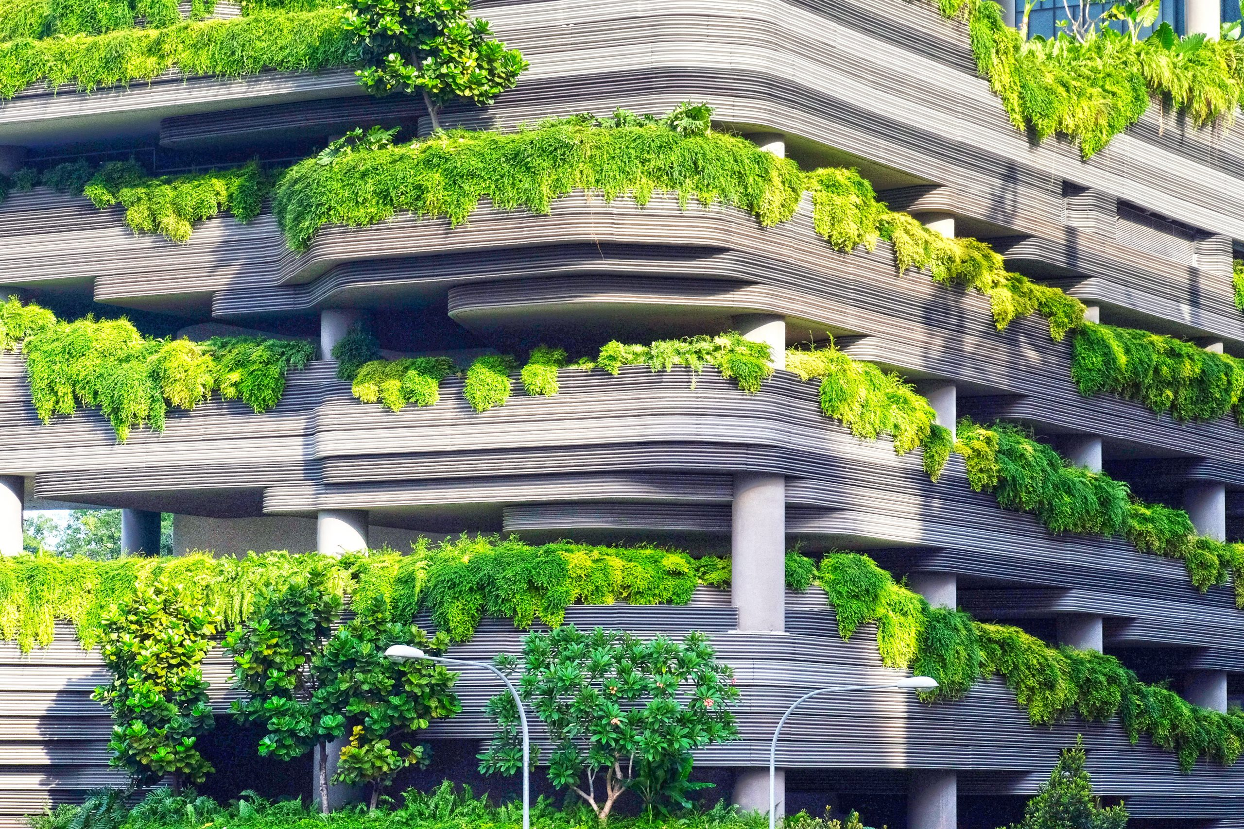 Architecture végétale